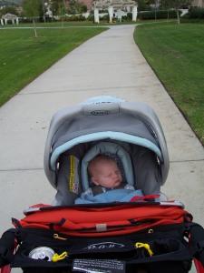 Calvin in the stroller